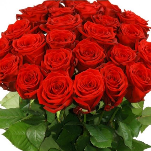25 роз Рэд Наоми